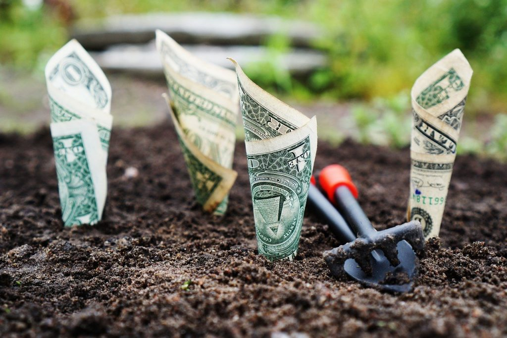 money, grow, interest